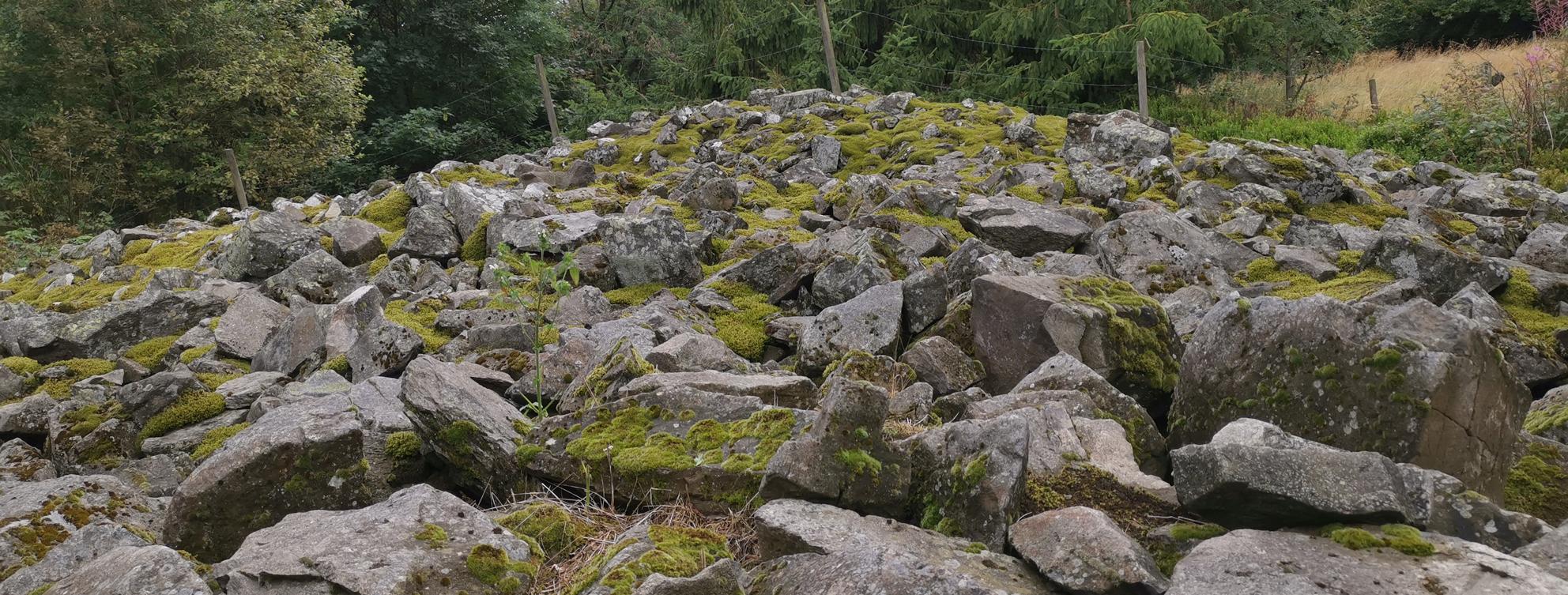 Mauer der Milseburg